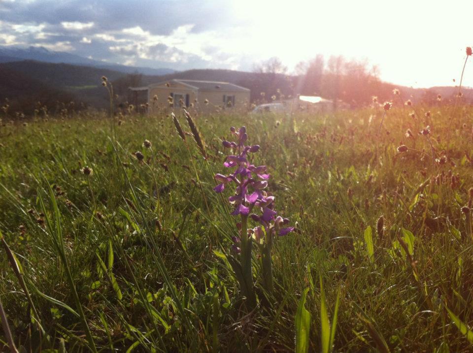 Camping à la ferme | Hébergement 4 étoiles en Ariège